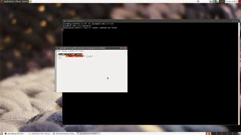How to get a graphical window of xterm or rxvt to open